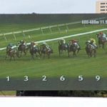 Horse Racing Betting Odds Expalined
